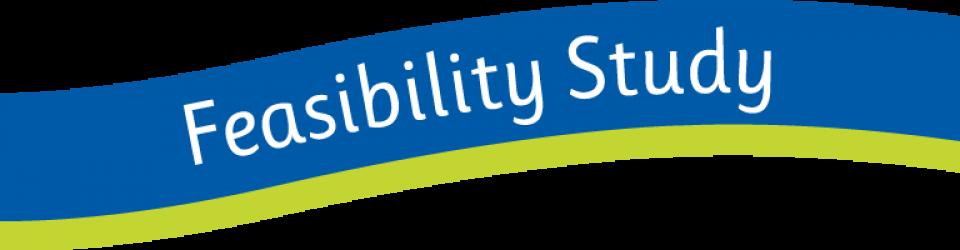 [feasibility study wave]